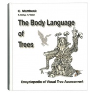 bodylanguageoftrees-3064-large