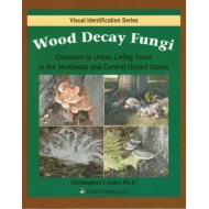 wooddecayfungi-626-large